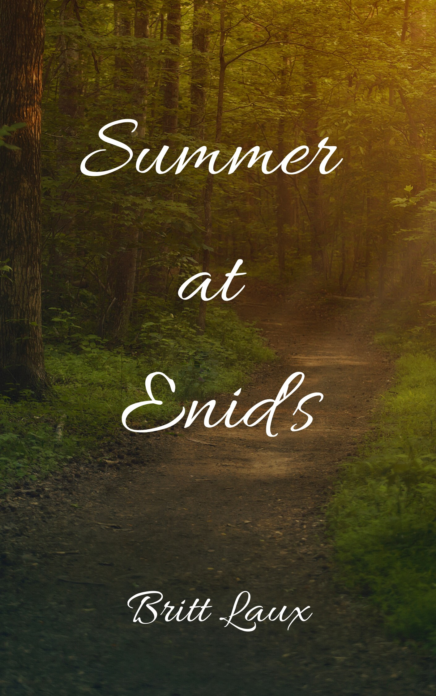 Summer At Enid's by Britt Laux
