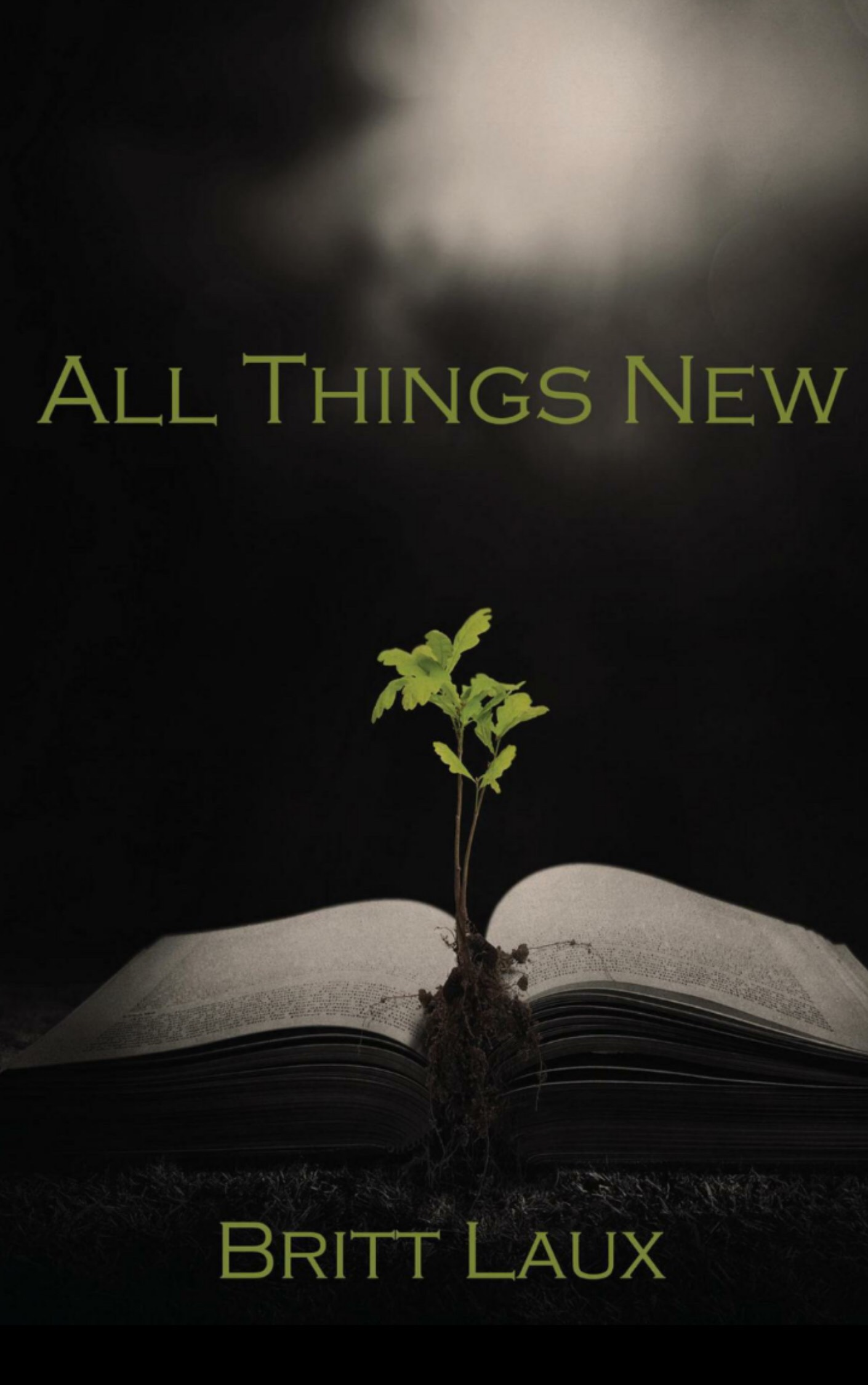 All things new by Britt Laux